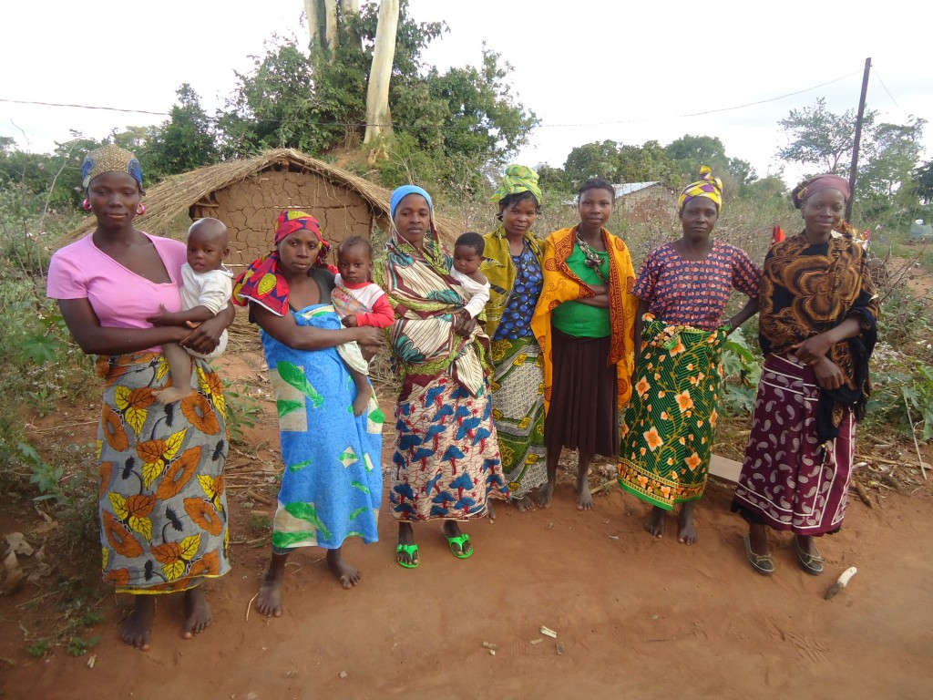 Women_Farmers_in_Itoculu,_Monapo_District,_Mozambique