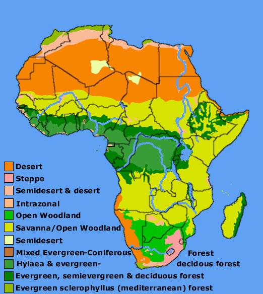 africa_veg
